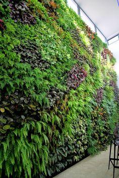 Jardín vertical en Matimex, Castellón. - Urbanarbolismo