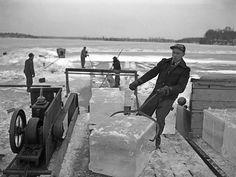 Harvesting ice from Lake Minnetonka Cedar Lake Indiana, Harvesting Tools, Ice Lake, Detroit Lakes, Ice Houses, Lake Signs, Spring Home, Beautiful Wall, Worlds Of Fun
