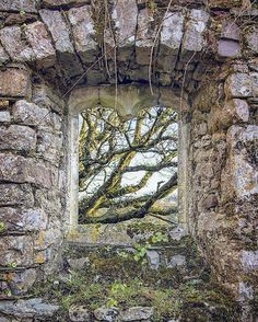 """2,191 Likes, 8 Comments - Photographing Modern Ruins (@forgottenheritage) on Instagram: """"A beautiful new dawn arrives at this ancient church ruin in Pembrokeshire. Pentax K3ii Manfrotto 55…"""""""