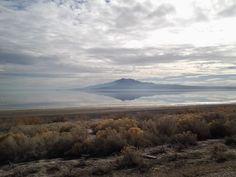 Feb. 5, 2014. Antelope Island.  The Great Salt Lake.