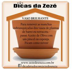Dicas da Zezé - COMO DEIXAR O VASO DE TERRACOTA SEMPRE BRILHANTE
