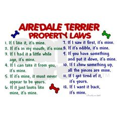 Airedale Terrier Property Laws...Or any other wonderful dog you love.