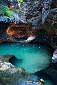 Well of Secrets, Zion National Park, UT by Shane McDermott by B.Awatana