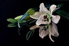 "Modern Still Life Photography Flowers | Dietrich Moravec, ""Sein und Schein""With a click on 'Send as art card ..."