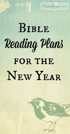 Bible Reading Plans for the New Year   Tricia Goyer