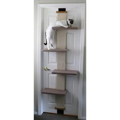 This is a must have for your indoor cats! I have moved twice and take this with me-no holes in the walls or door because it's spring loaded! Great unit for scratching, climbing, sleeping, and exercising! #Cat Climber #Door Cat Climber
