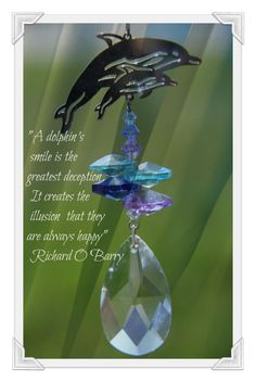 """""""A #dolphin's smile is the greatest deception. It creates the illusion that they're always #happy."""" Richard O'Barry"""