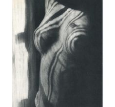 Man Ray, 'Shadow Nude,' 1934 sheet-fed gravure printed by Neogravure Co., France