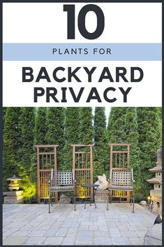 If you need privacy in your yard, but don't want to—or can't—install a fence, there's a great selection of trees, shrubs, and vines that can help you turn your property into a secluded retreat.