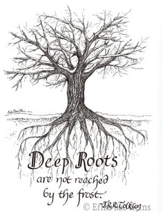 Deep Roots notecard set Another work from a friend (ErikaRaeHeins on Etsy), that is both beautiful a Jrr Tolkien, Tolkien Quotes, Tolkien Tattoo, New Quotes, Bible Quotes, Inspirational Quotes, Funny Quotes, Career Quotes, Encouragement Quotes