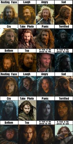 Fili and Kili. Kilis angry face, ohmygosh lol. I don't really know anything about fili and kili but this is really funny