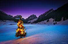 Merry Christmas Brand New Day, Holiday Wallpaper, Photomontage, Winter Holidays, Winter Wonderland, Paths, Merry Christmas, Fun, Life
