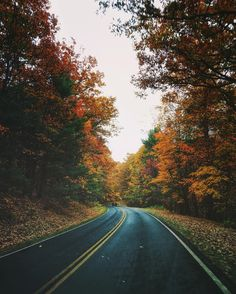 Of hearth and home — Autumn roads (at Skyline Drive - Shenandoah...