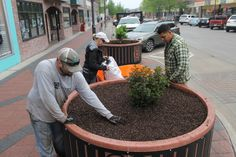 Jon Allison, left, Teri Veysey, center, and Ricardo Leanos, right, all of Country Landscapes in Ames, work in drizzly conditions late Monday afternoon to prepare containers along Main Street for planting on Friday. Unfortunately, rain remains in the forecast for every day this week except Thursday, when sunny conditions are forecast before rain returns on Friday. Photo by Michael Crumb/Ames Tribune