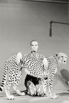 Spot Luxe. Leopard. Fashion. Woman. Style. Roar.