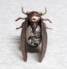 Cicada!