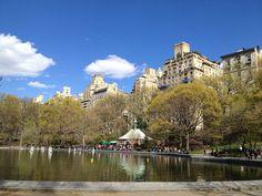 Love the Spring Central Park!