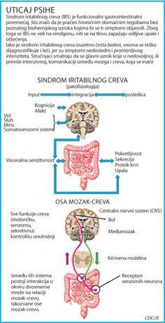 Blic Online | Nemir uzrokuje nervozna creva