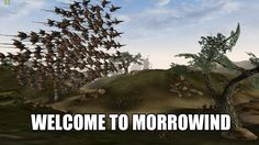Welcome to Morrowind!! Every time!! Every. Single time ._.
