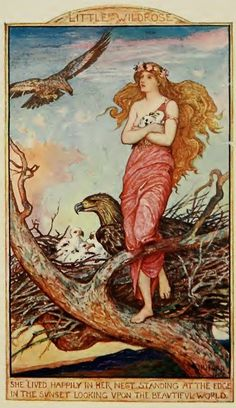 Little Wildrose, H.J. Ford  Andrew Lang, The Crimson Fairy Book