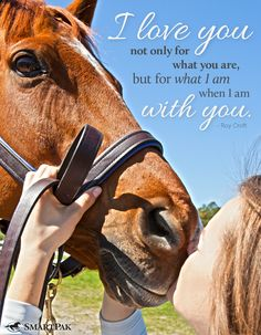 What do you love most about your horse?