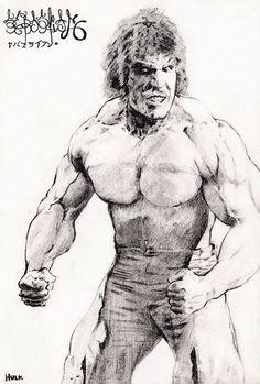 Lou Ferrigno's Hulk in a japanese illustration