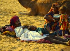 lifein-india:    Desert Siesta - Pushkar Mela (by Rabari-Fan)