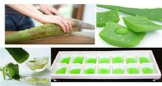 Do You Know Why Aloe Vera Should Be Frozen? - HealthyLife