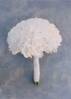 Simple White Hydrangea Bridal Bouquet - Un. Hydrangea Bridesmaid Bouquet, White Hydrangea Bouquet, Cascading Bridal Bouquets, Bridal Bouquet Blue, White Wedding Bouquets, Bridal Flowers, Flower Bouquet Wedding, White Hydrangeas, Hydrangea Boutonniere