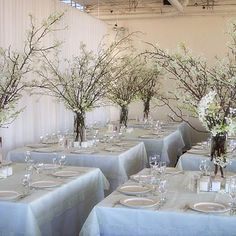 Show me your centerpieces with branches! (yours or inspiration pics!) :  wedding Branchreception