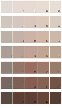 Sherwin Williams Fundamentally Neutral House Paint Colors - Palette 02