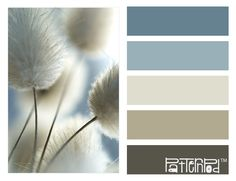Come to #Janovic for all of your painting needs. We are the color authority