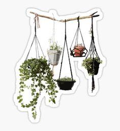 hanging plant sticker