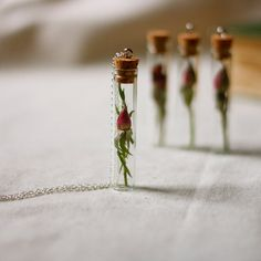 botanical vial necklace preserved specimen corked top romantic rosebud on extra long 35 inch silver chain $32