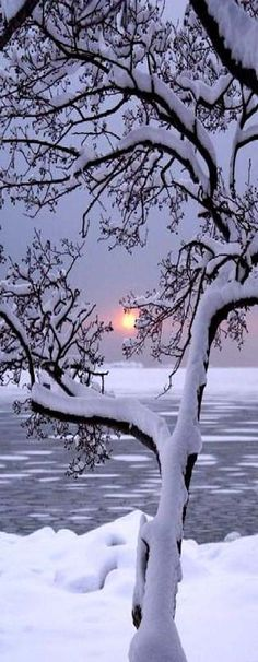 Sunsets With Snow