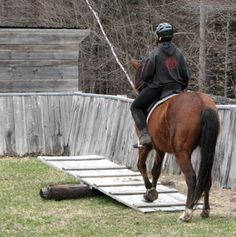 teeter/totter for your horse