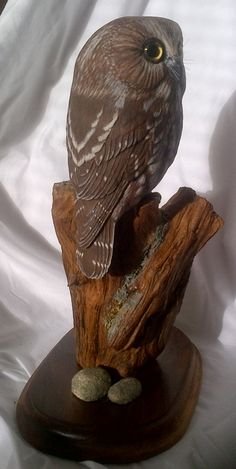 Evelyn Hurford - - Saw-whet Owl Carving Saw Whet Owl, Owl Bird, Carving, Sculpture, Animals, Animales, Animaux, Wood Carvings, Sculptures