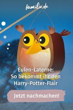 Für alle Eulen-Fans haben wir genau die richtige Bastelidee: Mit unserer Eulen-Laterne verbreitet ihr auf dem Sank-Martins-Umzug nämlich herbstliche Waldatmosphäre oder auch Harry-Potter-Aura. Wie ihr die süße Eule bastelt und was ihr alles dafür braucht. #herbst #eule #harrypotter #diy #selbermachen #sanktmartin #laternenumzug #laterne Pikachu, Harry Potter, Movie Posters, Owl Lantern, Owl Crafts, Book Folding, Family Life, Film Poster, Billboard