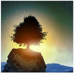 """Ganhamos clareza criando um espaço intermediário entre nós e a situação que queremos ver. Alcançamos a clareza à medida que não transferimos para a situação algo que sabemos ou desejamos, evitando assim sobrecarregá-la. Pelo contrário, deixamos que o todo atue livremente sobre nós, com suas múltiplas camadas e em suas aparentes contradições, até que se disponha numa ordem dinâmica diante de nosso olhar interior, revelando-nos o essencial, o próximo passo e a compreensão decisiva"""" Bert…"""