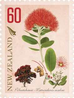 Stamps are fun. Nz Art, Arbour Day, Flower Stamp, Botanical Illustration, Postage Stamps, New Zealand, Nativity, Flora, Coins