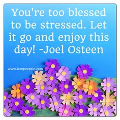 You're too blessed to be stressed. Let it go and enjoy this day! ~ Joel Osteen
