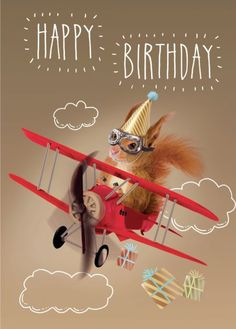Birth Day     QUOTATION – Image :     Quotes about Birthday  – Description  Martin Irish – 0624 – Squirrel | Representing leading artists who produce children's and decorative work to commission or license. | Advocate-Art  Sharing is Caring – Hey can you Share...