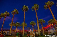 Chella Coachella, Fair Grounds, Fun, Travel, Holidays, Music, Tourism, Musica, Viajes