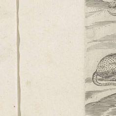 Zes panters, anonymous, 1581 - 1600 - Rijksmuseum