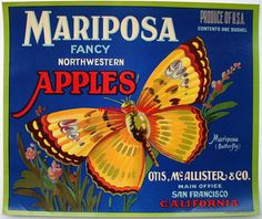 """1920s MARIPOSA Apple Label Main Office San Francisco CA Approximate size: 8.5"""" x 10.25"""" Near mint condition darkening due to its age.  Watermark will not be on the item you receive.  This item is over 90 years old.  I doubt we'll ever see ad art like these labels again. The deep, rich colors are just beautiful. Please remember, if framing, to use only acid free materials.  Stored in archival quality sleeve and will ship in same for protection; also backing boards. My home is smoke-free…"""