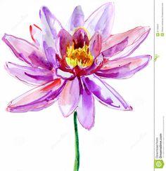 Pink Lotus Stock Image - Image: 31150941