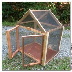Randy & Meg's Garden Paradise: Butterfly caterpillar cage for the class room