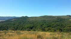 Paisaje ruta de los molinos de San Miguel Mountains, Nature, Travel, Saints, San Miguel, Paths, Scenery, Fotografia, Naturaleza
