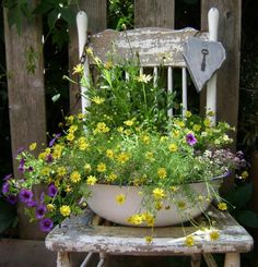 Idea for the broken bench DID THIS YRS. AGO BEFORE CHAIR ROTTED...saw hole in middle of chair to fit any container...I had one that fell through hole. Add other diffferent sizes containers with flowers around... Beautiful! I also lightly spray painted mine with Terra Cotta paint by Rustoleum. Not completely. Wanted the Rustic look. Lots of compliments from nieghbors.. :) mlf:).