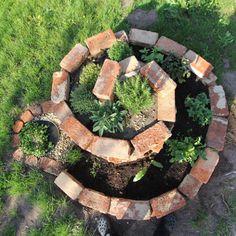 il giardino: Kräuter